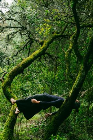 alento - pedro ramos - foto divulgacao.passos e compassos